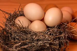 Egg-for-Dry-Skin